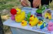 Bohócdoktorok támogatása a gumikacsa versenyen